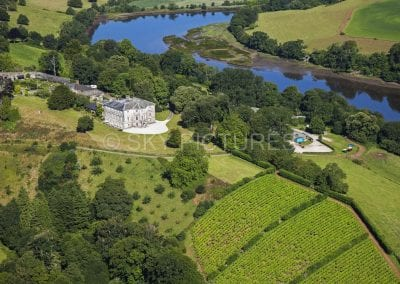 Sharpham House, Shapham Trust, Shapham Vineyards